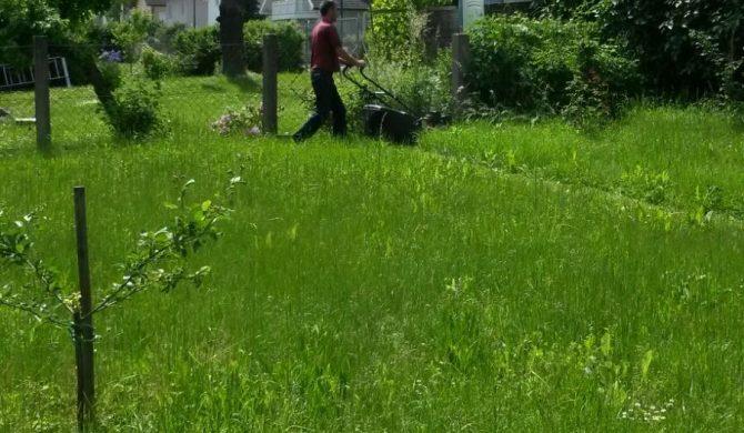 Gartenarbeit – Der Sommer kommt in die Gänge