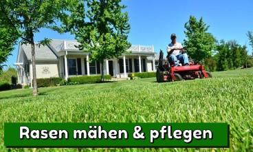 Rasenmähen - das macht der Gartenexperte für Sie