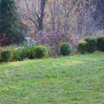 Gartenimpressionen Frühjahr 2017 Wels-Land