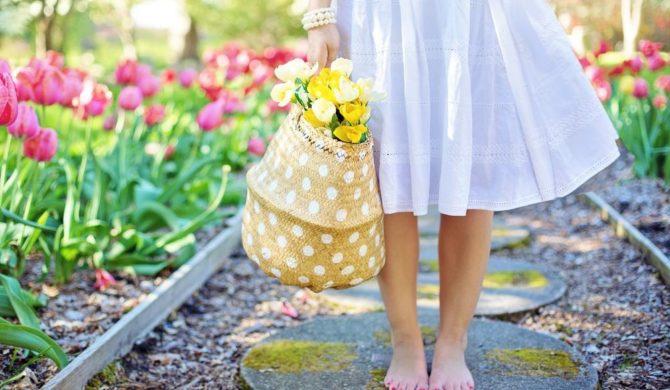 Endlich Frühling – Zeit den Garten aufzuwecken!
