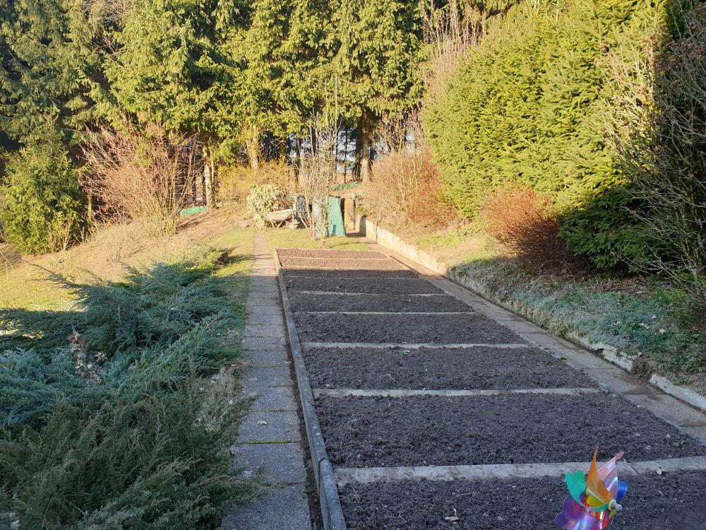 Garten nach der Pflege durch den Garten-Experten